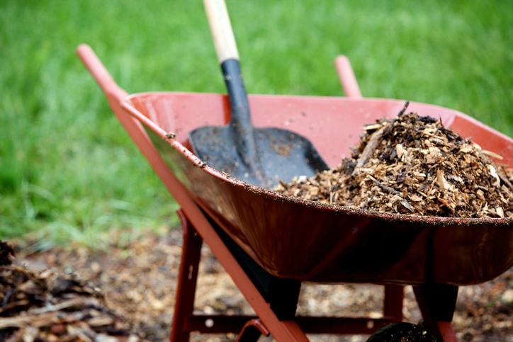 wheel barrow and shovel working with landscape mulch