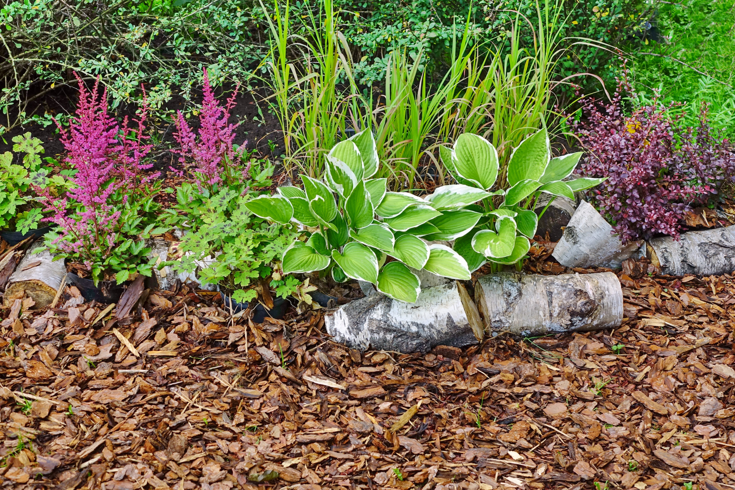 The advantages of mulching